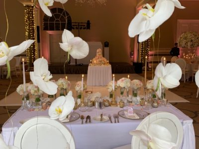 White Louis Dior wedding chairs at Rudding Park with hanging orchids